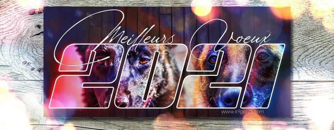 Meilleurs Vœux pour cette nouvelle année !!