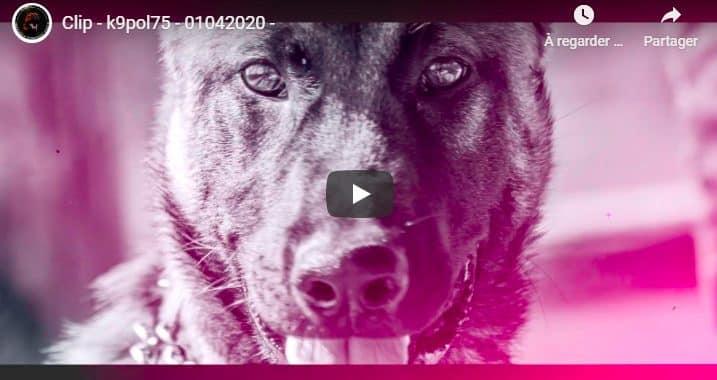 Video k9pol75