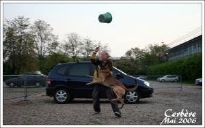 Cerbere(2)---Patrouille---2006