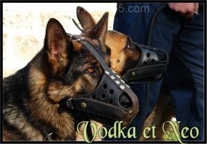 Vodka(4)---Patrouille---2006
