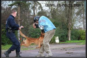 Cid(8)---Patrouille---2010---