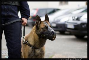 Farouk02-DetectInter-01.08.2012 (1)