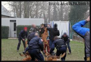 GroupePatrouille(3)---31.01.2011---